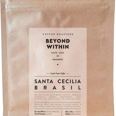 Santa Cecilia Brasil